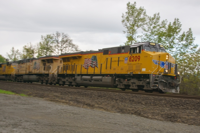 Northbound Union Pacific freight headed north at the Ridgefield National Wildlife Refuge north of Vancouver, WA