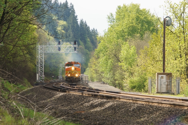 BNSF passing under the signal headed north at the Ridgefield National Wildlife Refuge north of Vancouver, WA