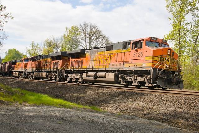 BNSF rolling by headed north at the Ridgefield National Wildlife Refuge north of Vancouver, WA