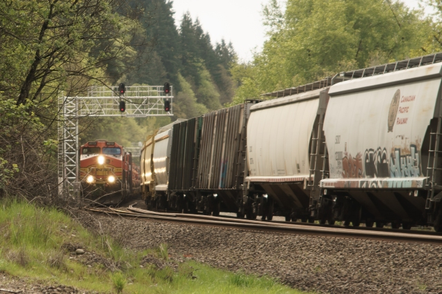 BNSF overtaking a slower, lower priority UP freight. Both are headed north at the Ridgefield National Wildlife Refuge north of Vancouver, WA