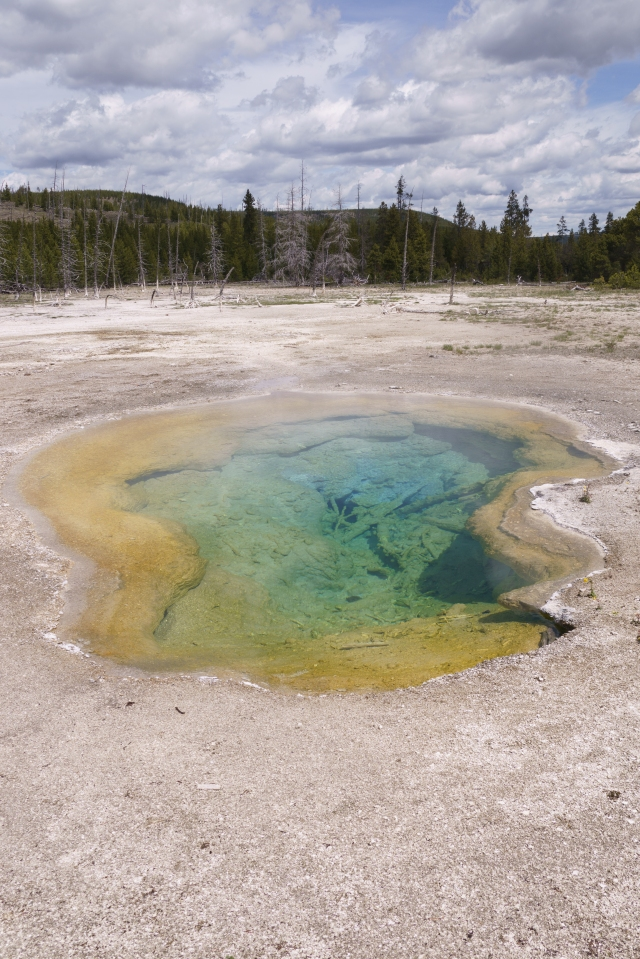 Water pool at Yellowstone National Park