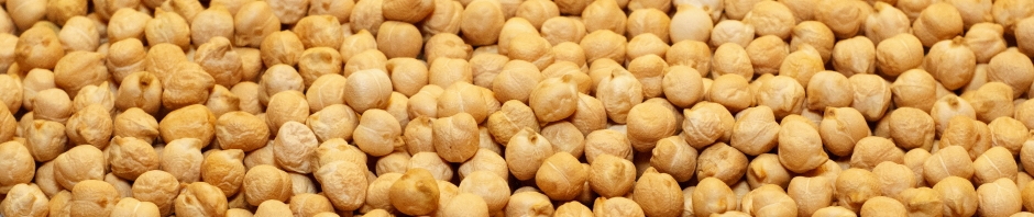Dried chickpeas for hummus - banner photo