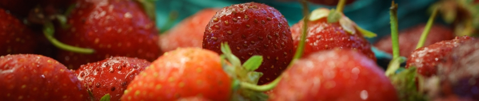 Strawberry sorbet banner photo