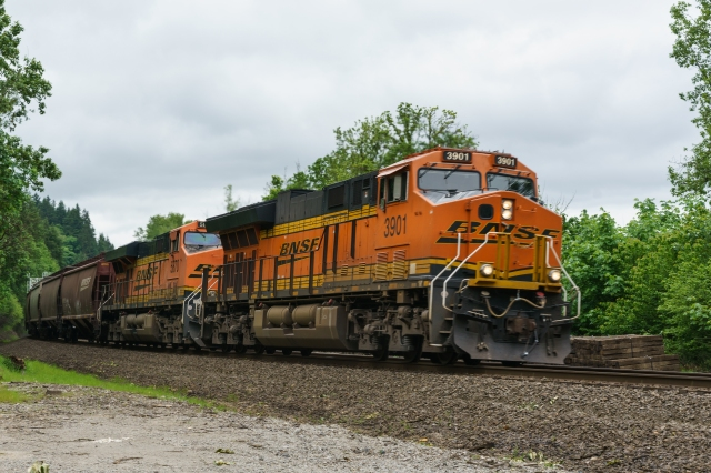 Northbound BNSF grain train at Ridgefield Bird Sanctuary