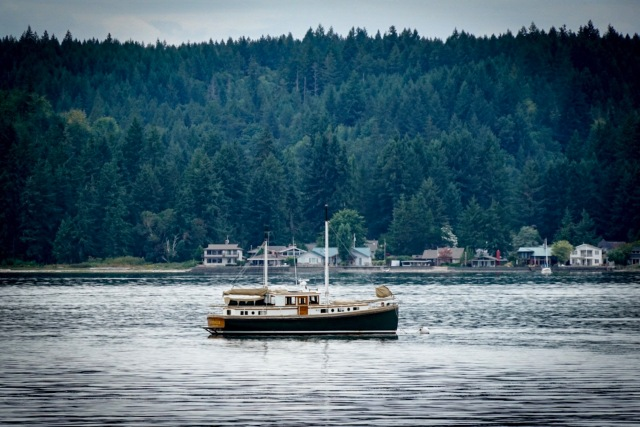 Sailboat at anchor at Hood Canal