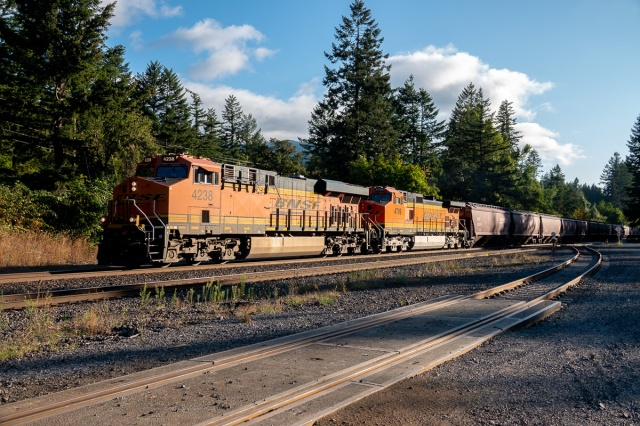 Westbound grain train at Skamania Landing RD, WA - Columbia Gorge