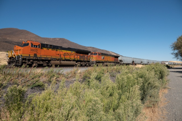 Idling BNSF at Avery Recreation Area, Washington